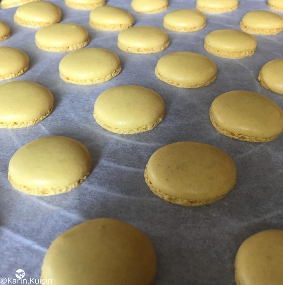 macaron coque